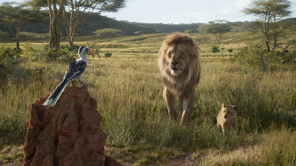 Image result for the lion king 2019 wallpaper