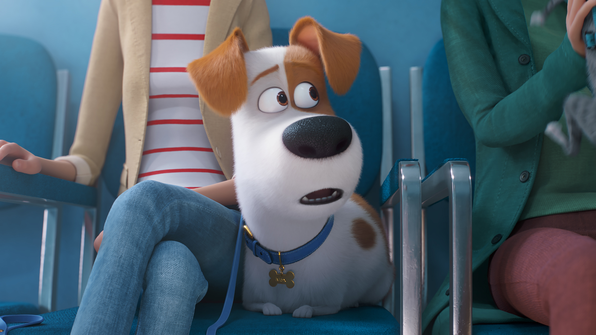 Secret Life Of Pets 2 Hd Wallpapers Of Popular Movie Supertab